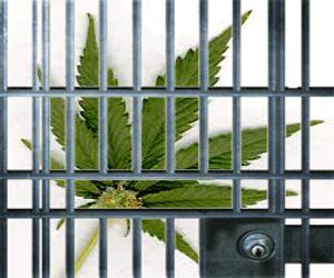 marijuana-jail-pot-crimes-new-pot-laws