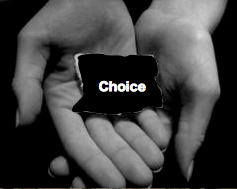 choice-its-in-your-hands-nsa-spying-patriot-act-executive-order-12333