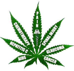 medical-marijuana-legal-congress
