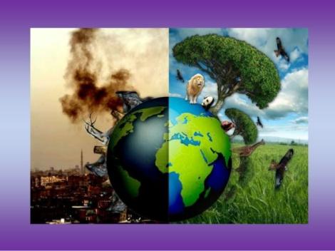 trump-killing-environment